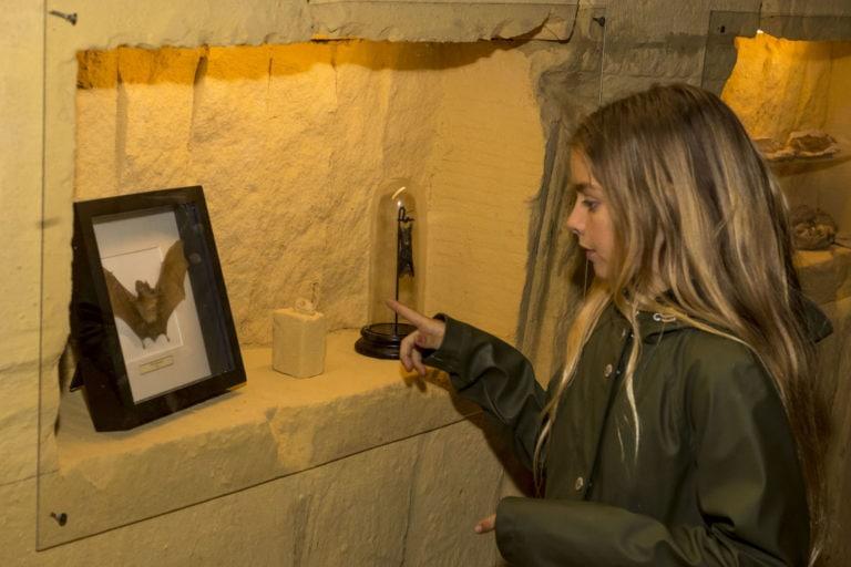 vleermuizen-grotten-kanne